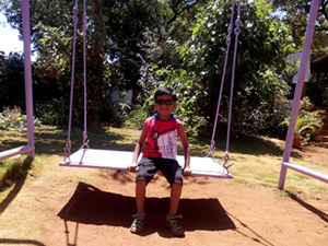A Big Wooden Swing in the Garden at Hotel Happy Home